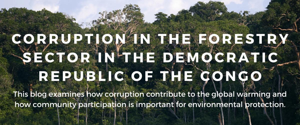 Corruption fuels illegal logging in Democratic Republic of the Congo.
