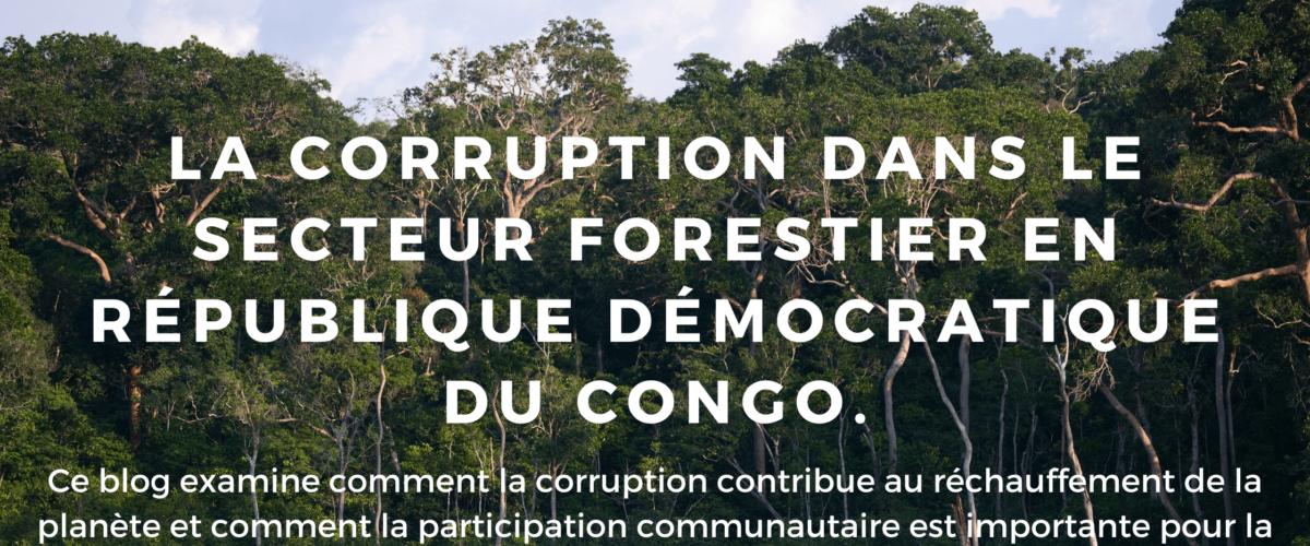La corruption menace les forêts et contribue au réchauffement climatique